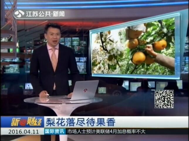 视频: 梨花落尽待果香 160411 新财经
